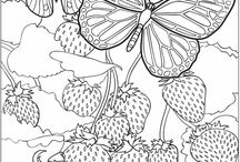 Coloring Pages / by Lucille Hall