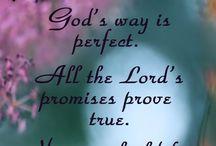 Bible Jnl 2 Samuel