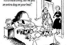 Doggie Cartoons