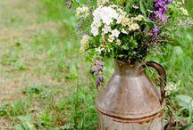 Wedding ideas / by Kelsey Heyberger