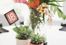 Plants,Flowers,Etc. / by Alice Cicatiello