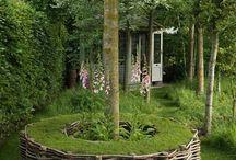 Puutarha ja terassi