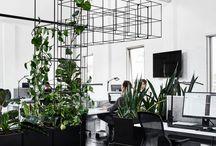 mark office
