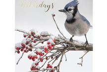 Holiday Gifts That Help Support Wildlife / Wonderful holiday gifts, postcards, home decor and more that celebrate the beauty and richness of nature. Give a gift of giving, and help NWF carry out its mission of uniting all Americans to ensure wildlife thrive in a rapidly changing world.