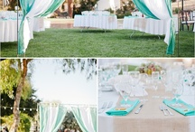 Outdoor wedding or party