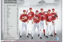 2015 College Baseball Posters / College Baseball Promotional Posters from around the country