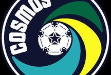 1.NEW YORK COSMOS