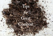 Compost / All about Compost