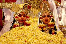 Holi  / Festival Of Colours