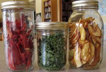 Food Storage (Canning, Drying, & Freezing) / by Kerri Sternberg