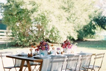 gatherings / life around the table