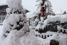 VAL DI PEJO in Inverno / NATURA INVERNALE ED ESTIVA .