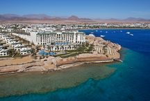 Sharm el Sheikh - Stella Di Mare Beach Hotel / Stella Di Mare Beach Hotel offers a great sea front location, spectacular views and only 20 min walk to Na'ama Bay. 5* deluxe - Sharm el  Sheikh - Egypt
