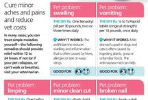 Pet Stop-Try A Home Remedy