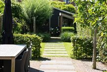 indeling tuin