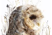 Owls My Love
