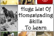 Eco-friendly, Homesteading Tips and Ideas