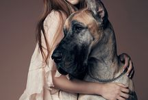 #Great #Danes with #Ladies / #Beauty will save the #world