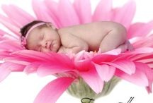 Babies in Bloom Photography in Utah / Babies imposed in flowers ( and other creative items ) by Tanya Hovey photography in Kaysville Utah.