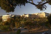 ΛΟΓΟΣ: Αυστραλιανό Κέντρο Ελληνικής Γλώσσας και Πολιτισμού