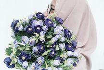 My pic / #Hijab #Beauty #Love #Tumblr #Nature #Flowers #Sea #Ocean