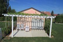 Faire une pergola ou une treille avec vignes / Très peu exigeante et facile d'entretien, la vigne s'accommode de tous les climats et de tous les sols. Elle est également très décorative, cultivée contre la maison, en terrasse ou dans un coin de jardin, et permet bien évidemment de se régaler de ses belles grappes de raisin à l'automne.