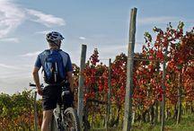 biking in monferrato / scoprire il Monferrato in bicicletta