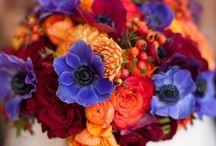 Blumensträusse / Alle lieben schöne Blumensträuße. Hier findet Ihr tolle Inspirationen zu jedem Anlass.
