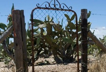 Karoo style / My space that I remember as a little girl with my ouma and oupa........