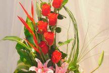 Maria bloemschikken