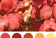 #colours