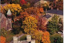 Princeton University Fall Engagement Photo Session with Idalia Photography