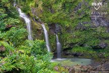 Road to Hana Maui Tour / Pictures from our luxury tour on the Road to Hana
