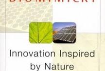 Biomimicry_Lab