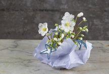 Helleborus creations by Flower Factor