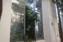 Tornado Orto Botanico / Si documentano i danni della tromba d'aria del 19 settembre 2014