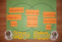 """Frog and Toad"" exemplar / Exemplar Lesson Activities / by Marie Hurley"