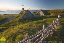 Viking Trail Newfoundland / by Emily Hunnicutt & Peter Kruger