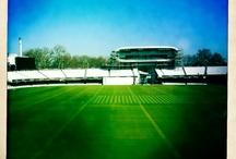 cricket / by Paul Stuckey