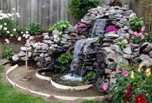 Backyard / by Holly Hamanjian