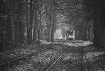 Tramways