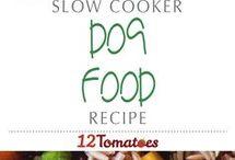 Pets - Recipes