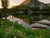 Oregon <3 / by Dana Pruner