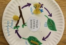 2nd Grade Science