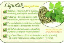 Ligurček a zdravie