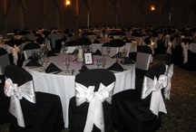 Linens & Chair Covers / Chair Covers from Mimi's Bridal Showroom! Customize the color and look for your wedding or special event! www.MimisBridalShowroom.com
