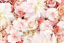Flowers / fleurs