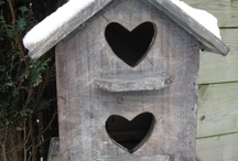 casette x uccellini