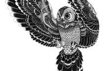 I ❤ owls!