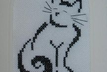 pisici#